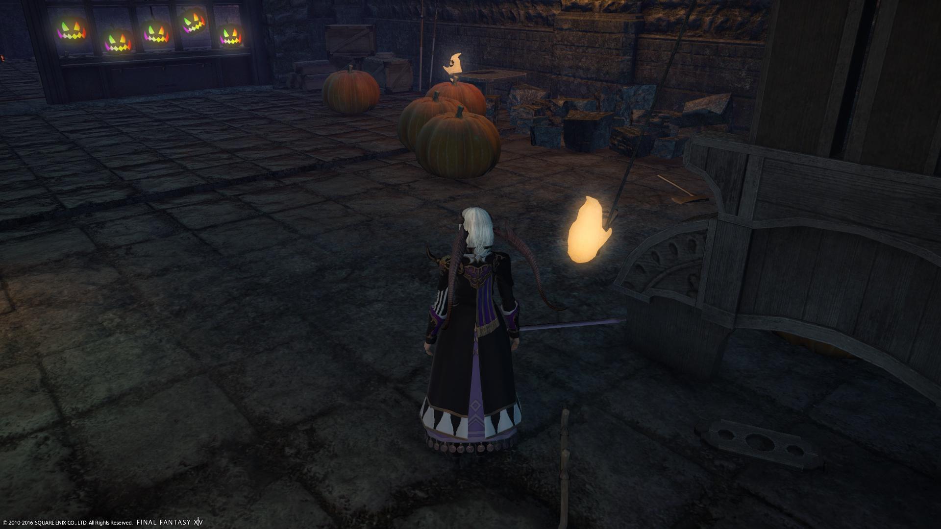 並んでいるかぼちゃ