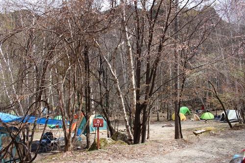 キャンプ25