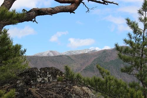 山登り12