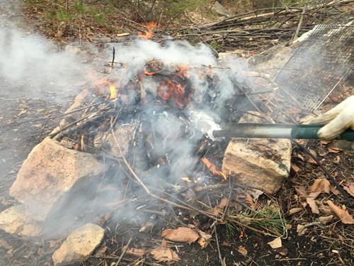 焚き火14