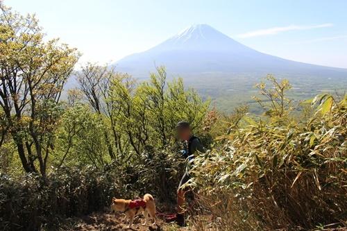 竜ヶ岳18