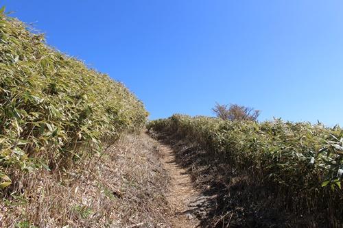 竜ヶ岳26