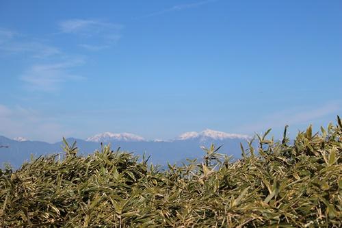 竜ヶ岳33