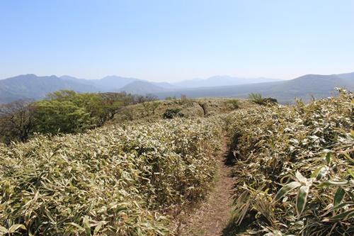 竜ヶ岳35
