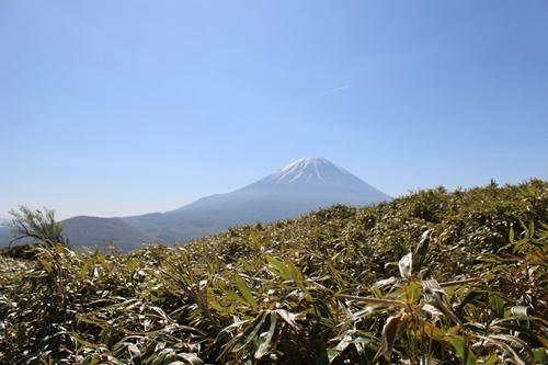 竜ヶ岳37