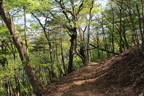 竜ヶ岳45