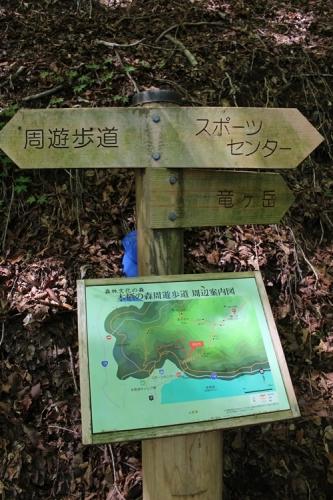 竜ヶ岳51