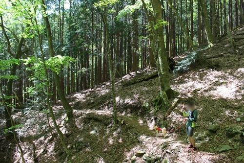 竜ヶ岳55