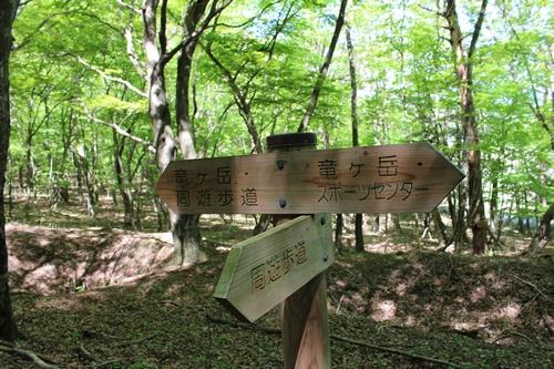 竜ヶ岳64