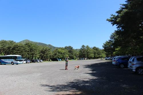 竜ヶ岳71