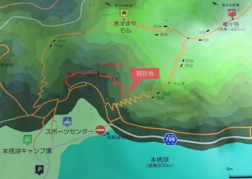 竜ヶ岳周遊歩道