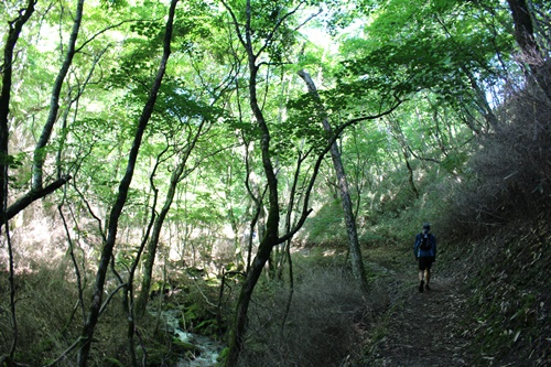 笠取山13