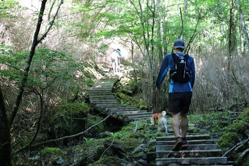 笠取山15