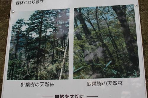笠取山下山11