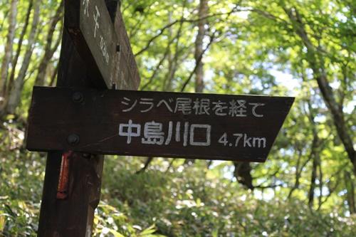 笠取山下山14