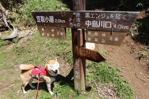 笠取山下山15-1
