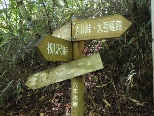 鶏冠山13