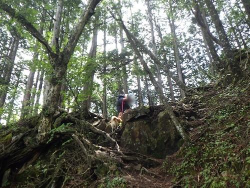 鶏冠山35