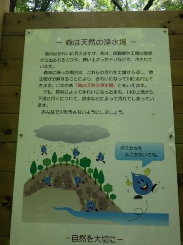 鶏冠山下山22