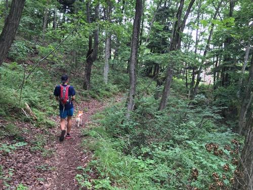 穂坂自然公園16