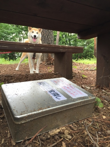 穂坂自然公園12