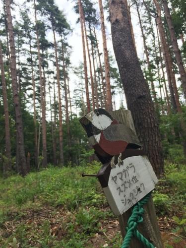 穂坂自然公園30