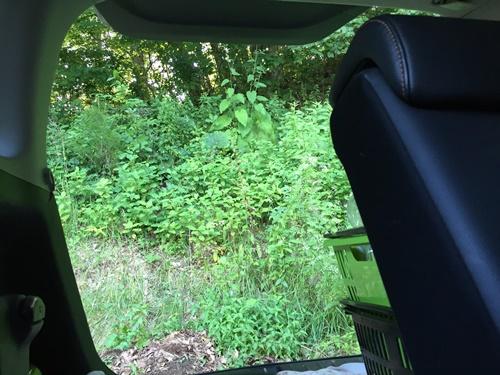 車窓から2