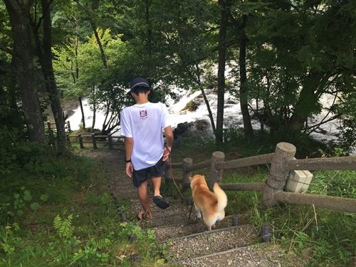 犬ころの滝2
