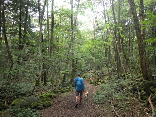 樹海33東海自然歩道