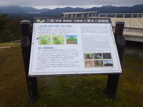 樹海62三湖台