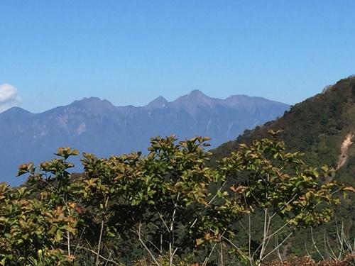 茅ヶ岳14