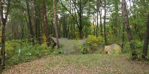 あさまの森キャンプ場10