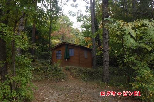 あさまの森キャンプ場11