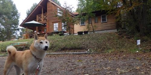 あさまの森キャンプ場17