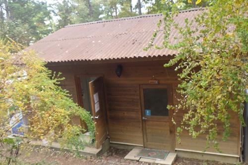 あさまの森キャンプ場26