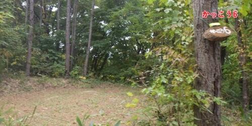 あさまの森キャンプ場31