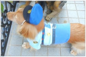 H28102502犬のおまわりさん