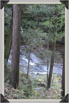 H28110505濃溝の滝