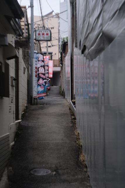 CookeCinelens4725と本郷菊坂通り