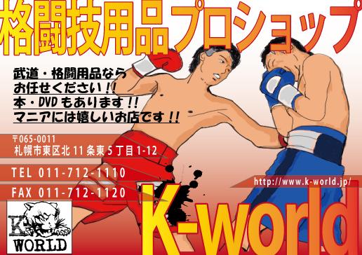 k-world広告3