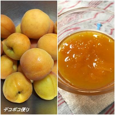 20160630 杏1
