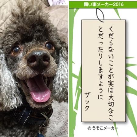 20160707 七夕2
