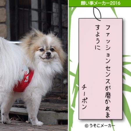 20160707 七夕3