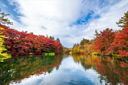 2016-10-31 軽井沢紅葉03 (1 - 1DSC_0020)_R