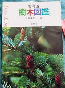 北海道樹木図鑑300