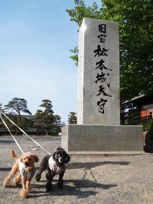 ベルユメ 松本城