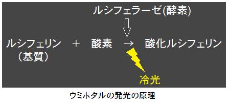 発光の原理