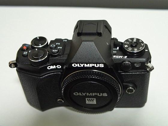 EM532038.jpg