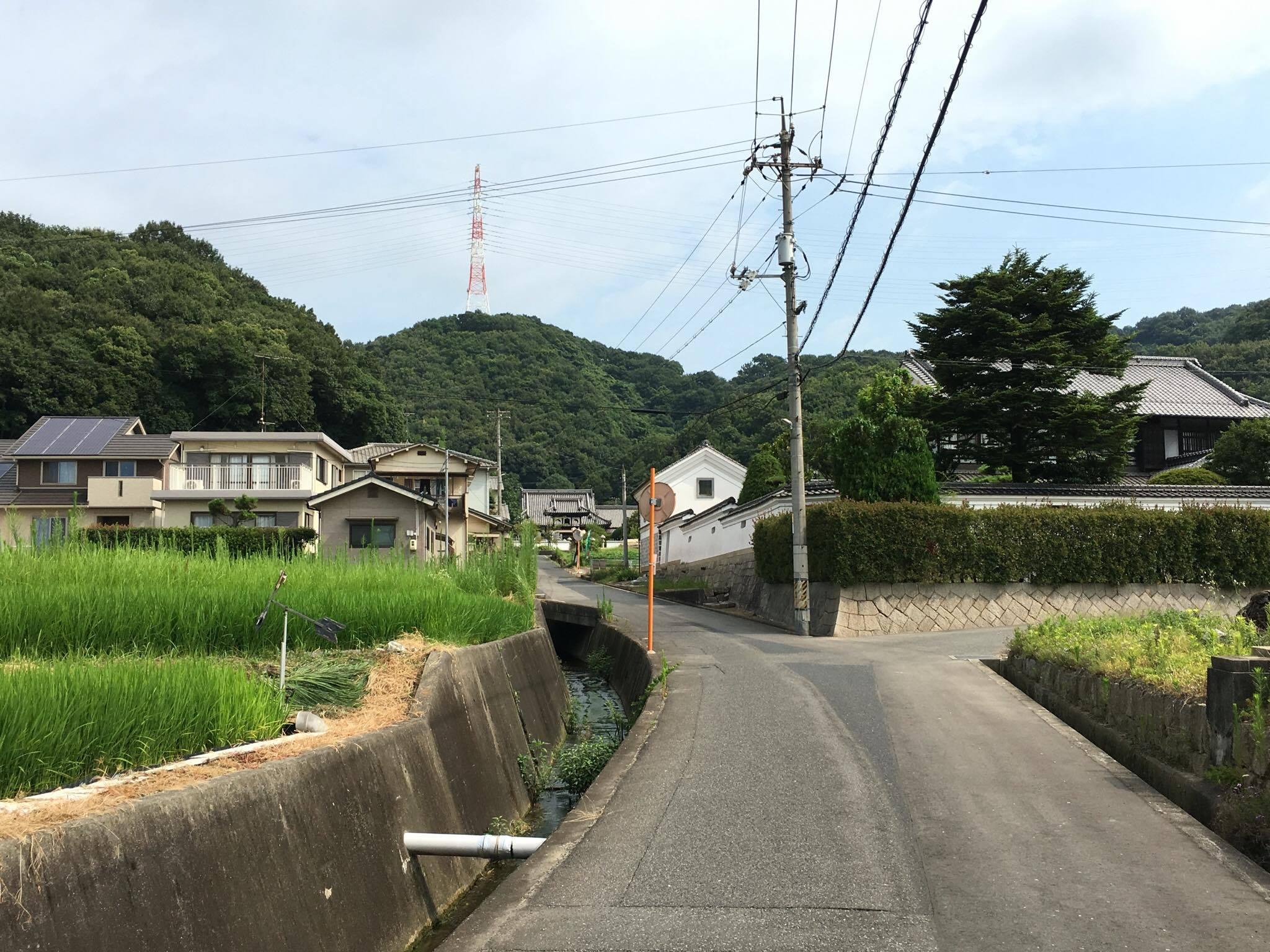 大門への道6