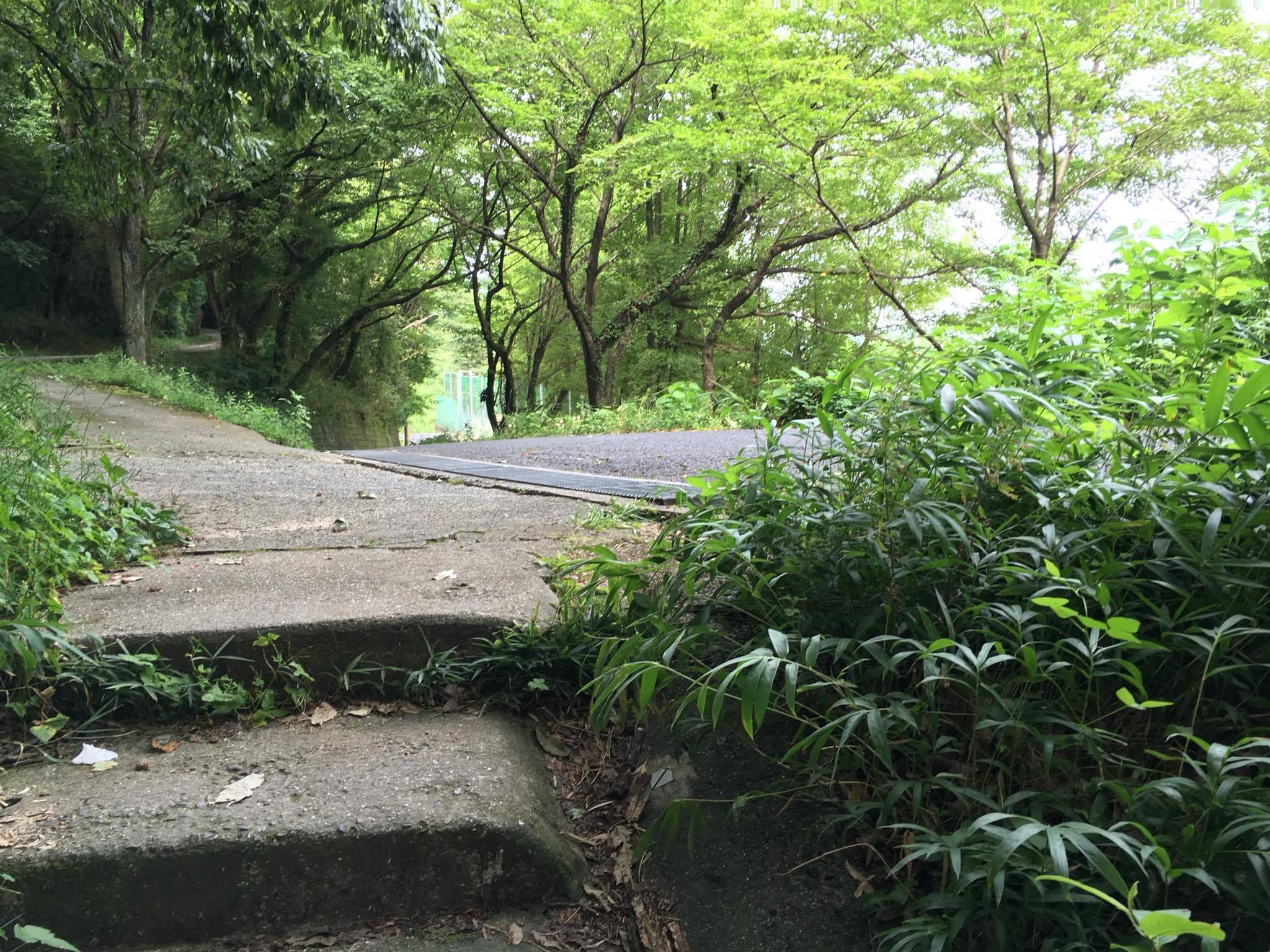 大門への道16